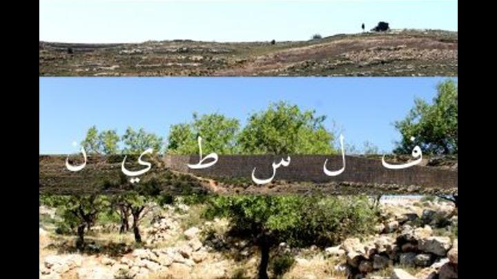 Résistance d'un cultivateur Palestinien