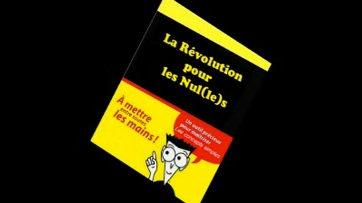 La Révolution pour les nul(le)s